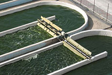 Algal Turf Scrubbers clean water and create biomass for renewable fuel