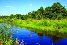 US DOE BETO study biofuel's effect on water sustainability