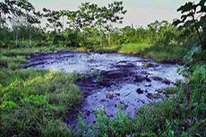 BP liabilities dwarf Chevron's