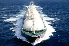 LNG export decision making procedure