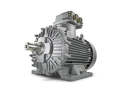 Siemens motors safe under extreme conditions